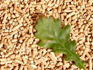 biomasa-de-casa
