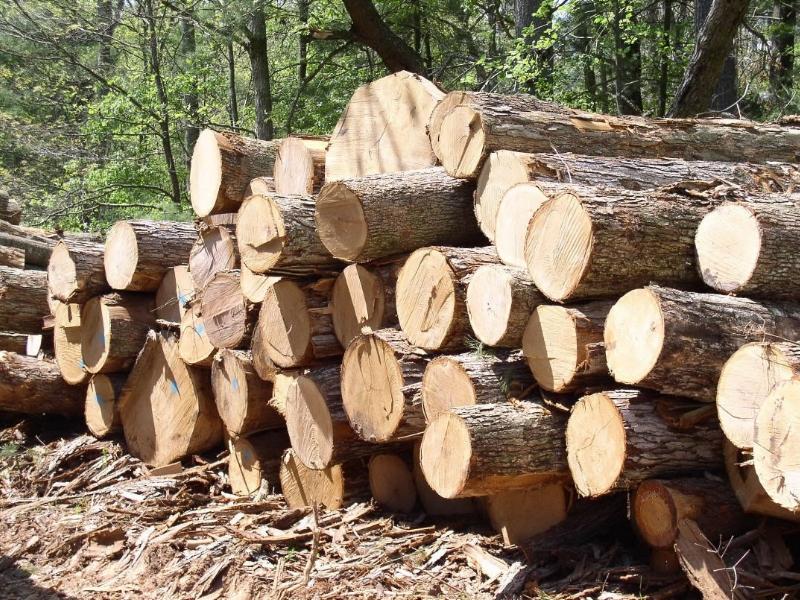 calderas-biomasa-xunta