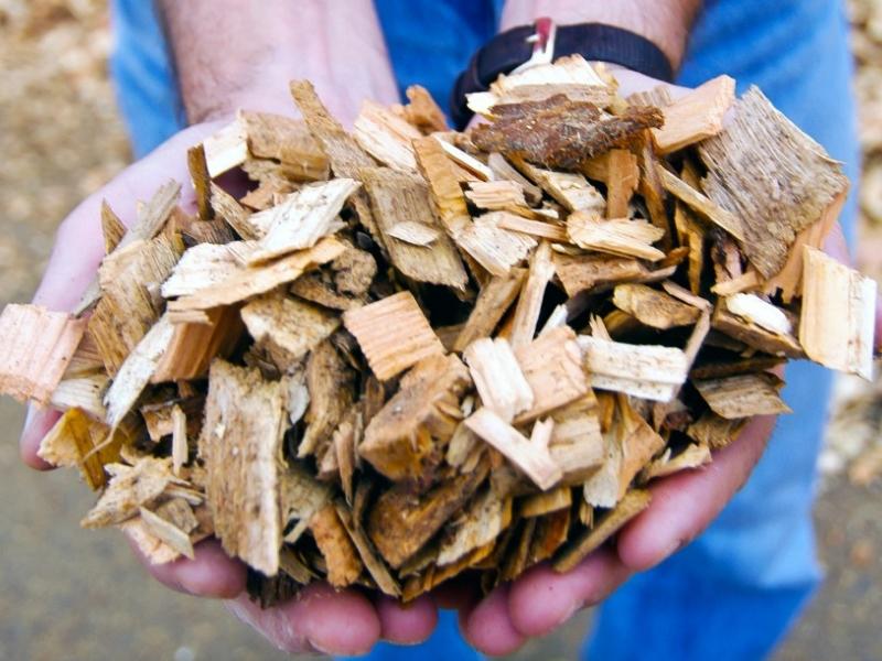 gobierno-extremeno-biomasa