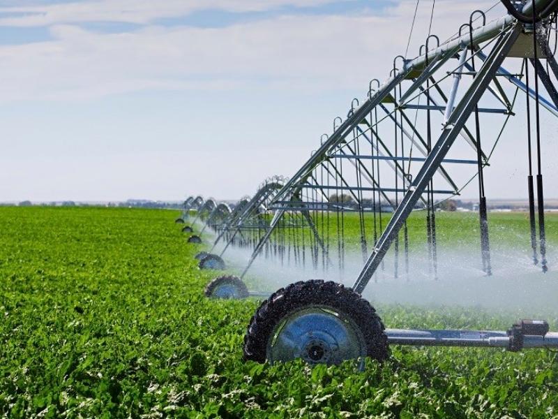 proyecto-sector-agricola-biomasa