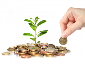 Subvenciones para la Biomasa
