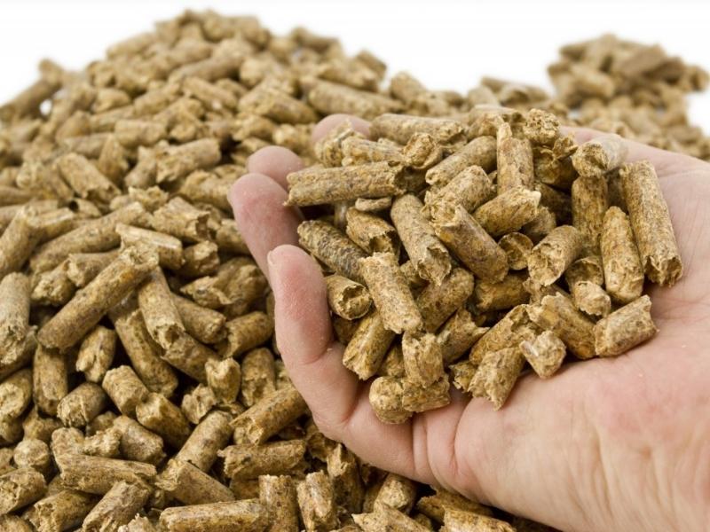 trabajos-biomasa